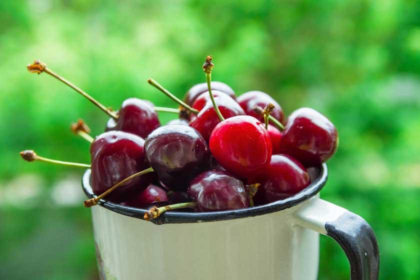 Cherries in a mug