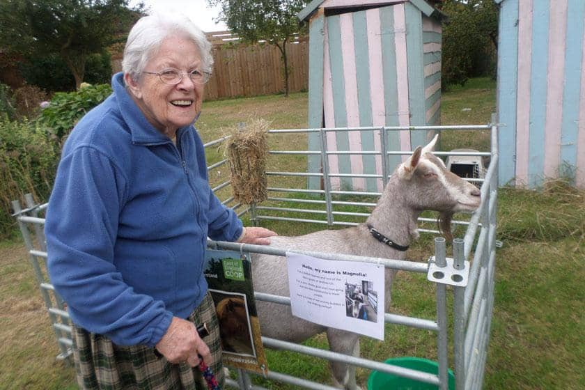 A resident with Magnolia the dairy goat