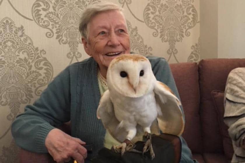 Pat Derham with one of the owls