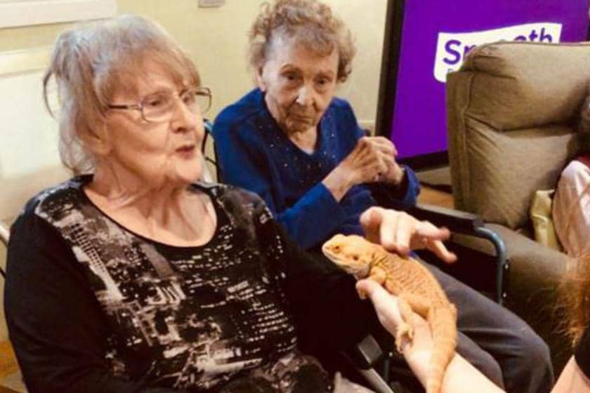 Residents from Lake View Residential Care Home meeting a lizard from Zoolab.