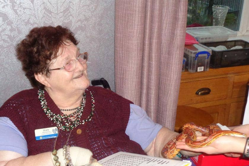 A resident meeting one of the snakes from Zoolab at Riverlee Residential and Nursing Home.