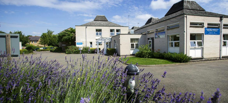 Lavender gardens.