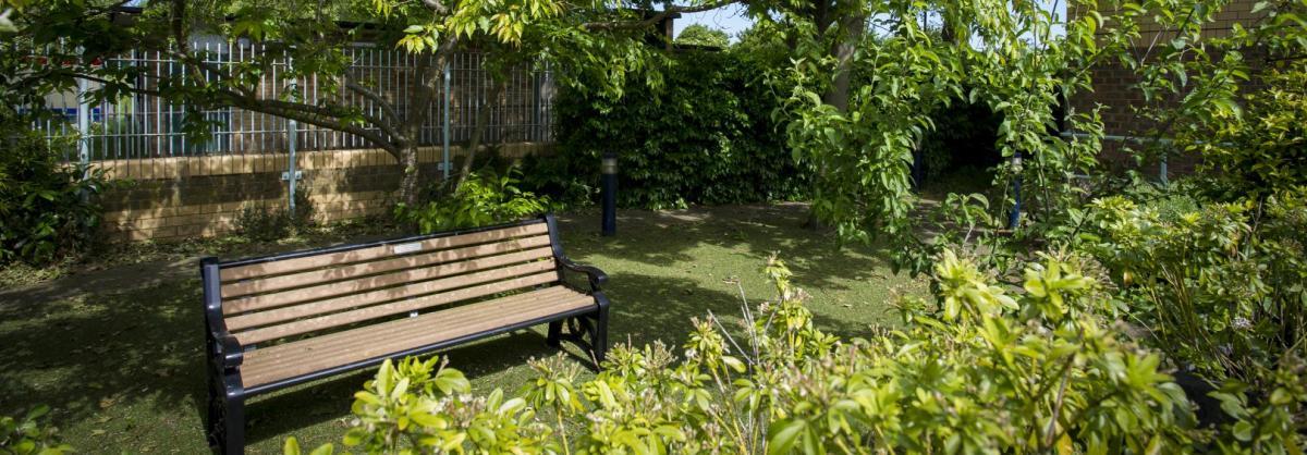 A wooden bench set in leafy gardens.