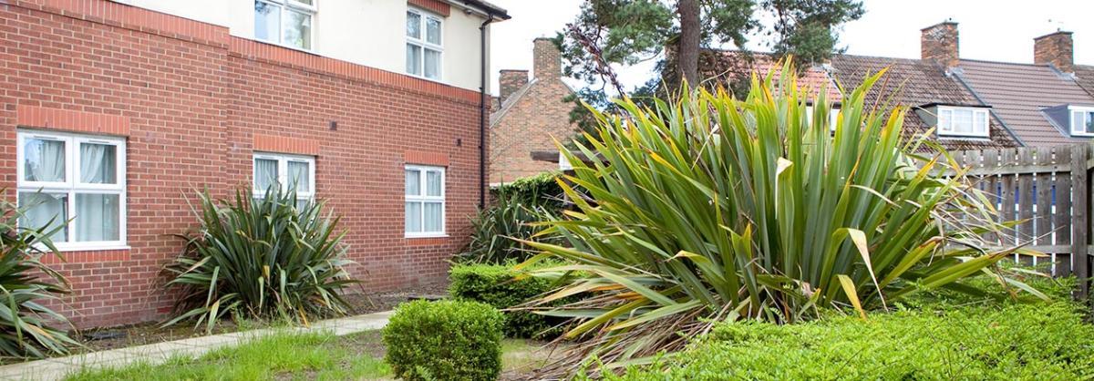 Garden at Rushyfields Residential and Nursing Home in Durham
