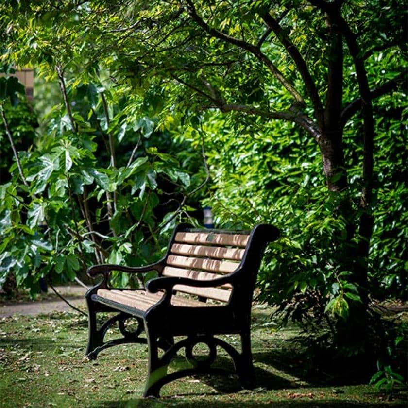 Bench in the garden at Parkview House