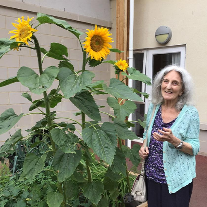 Resident Judy McDonald, who lives with dementia at Haven Residential Care Home in Pinner, Middlesex, admires the sunflowers the residents have planted